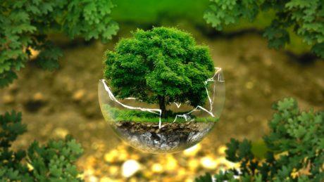 Environnement énergie